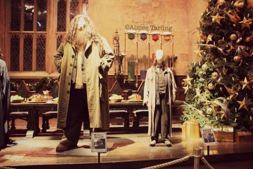Hagrid and Filch