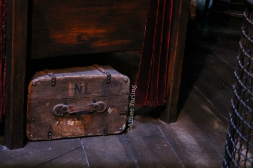 Neville's Trunk